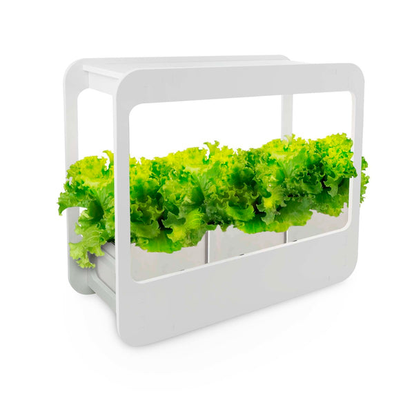 Mini Garden LED Gardening Frame with Pot (Plant & Soil Not Included)MG004