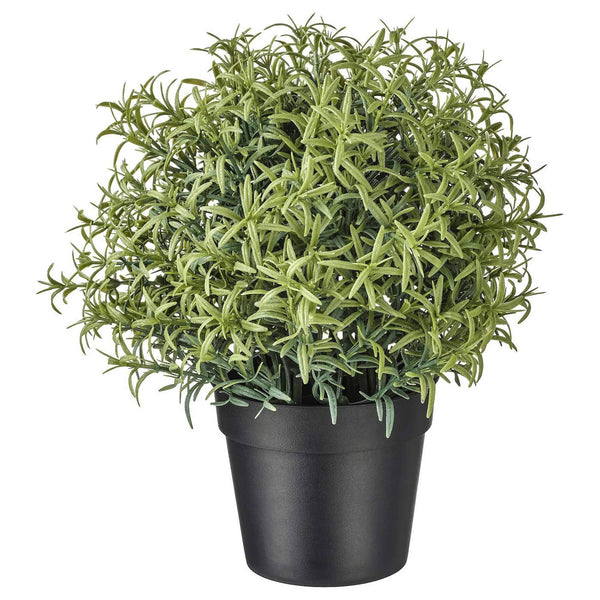 RSTC Rose Marry Artificial Plant Natural Green Pack of 1 PC