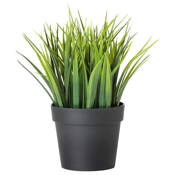 RSTC Decorative Artificial Plant Natural Green Pack of 1 PC