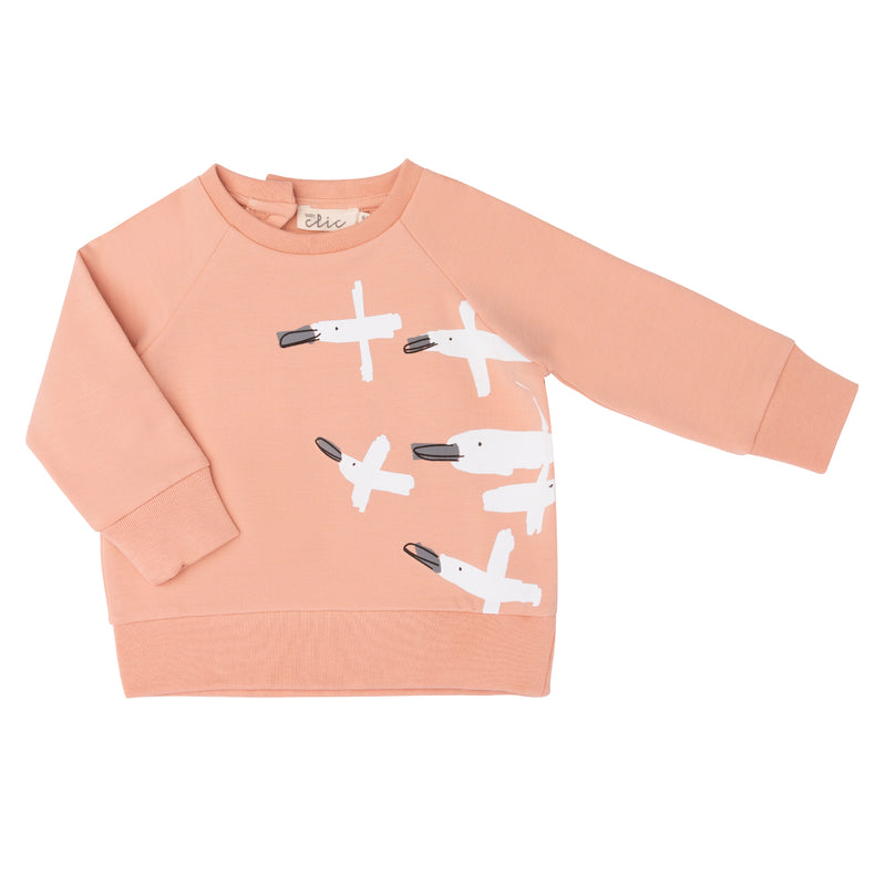 Sudadera Birds Salmon