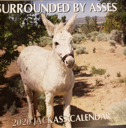 Surrounded by Assess Calendar 2020
