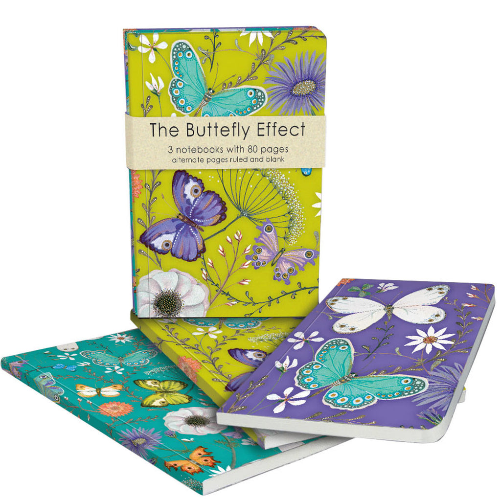 Roger la Borde Butterfly Ball Exercise Books Bundle featuring artwork by Jane Ray