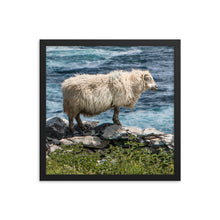 Load image into Gallery viewer, Cliff Sheep - Framed photo paper poster