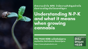 Understanding N-P-K and what it means when growing cannabis
