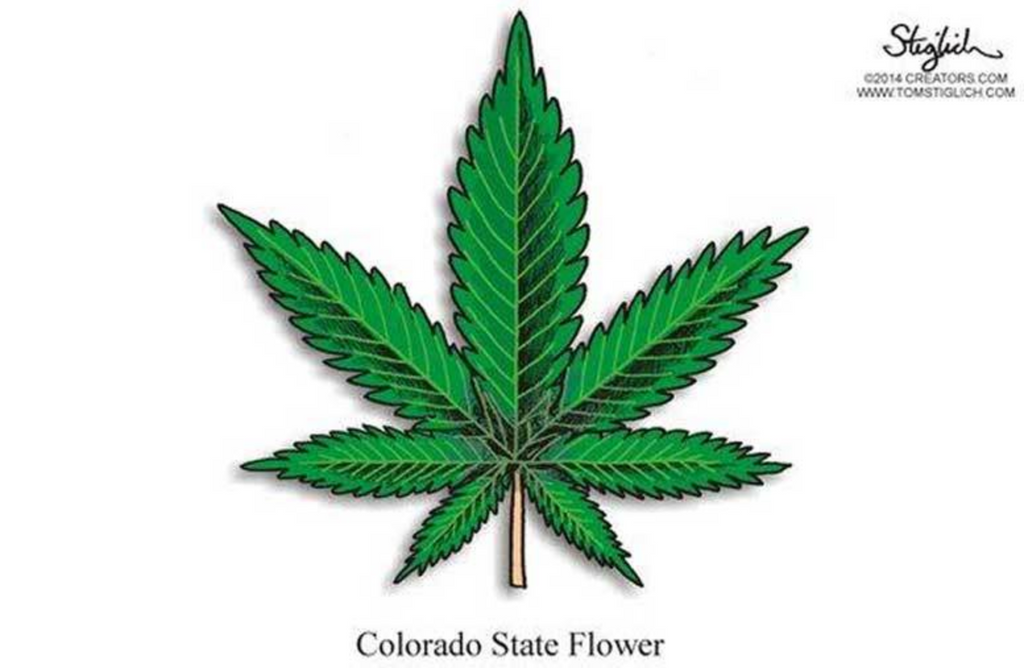 State Revenue from Pot Tops $1 Billion in Colorado