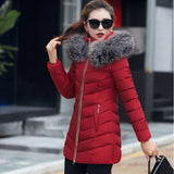 Winter Women Down warm jacket - City Chick Fashions LLC