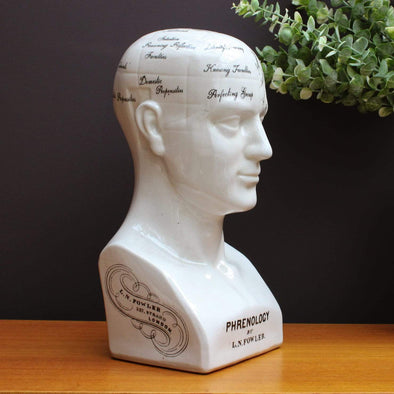 Ceramic Phrenology Head | 44cm in Ornaments from Oriana B. www.orianab.com
