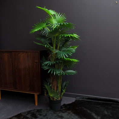 Faux Plant | Ornamental Fan in Vases & Plant Pots from Oriana B. www.orianab.com