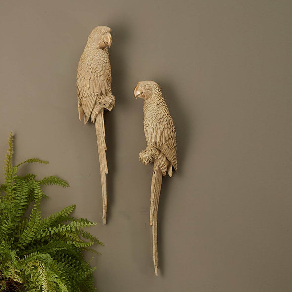 Pair of Parrots Wall Decoration in Wall Art from Oriana B. www.orianab.com