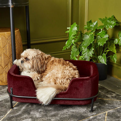 Velvet Pet Sofa | 2 Colours in from Oriana B. www.orianab.com