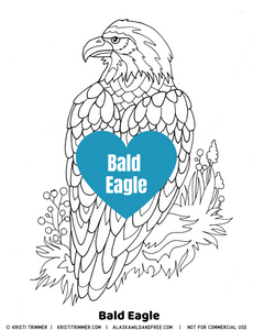 Color: Bald Eagle Coloring Pages