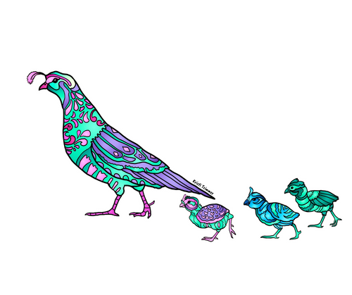 Bird - Quail Family Sticker