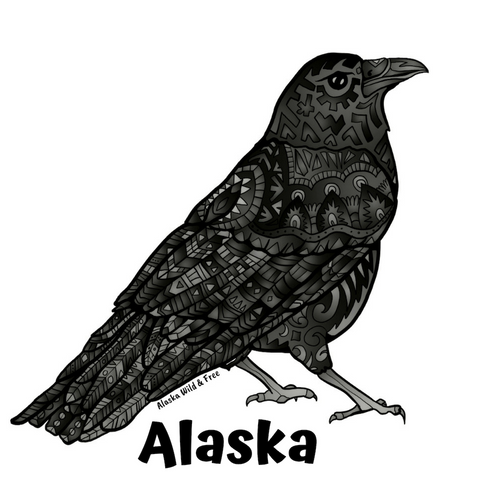 Bird - Raven - Black + Alaska Sticker
