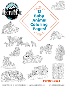 Color: Baby Animal Coloring Pages