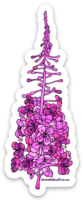 Flowers - Fireweed Magnet