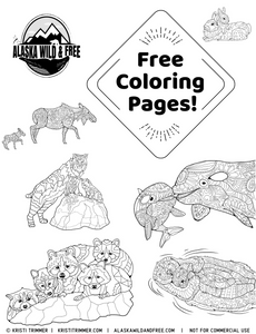 Color: May Coloring Pages