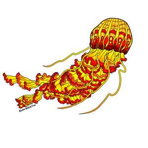 Jellyfish - Tiger Sticker