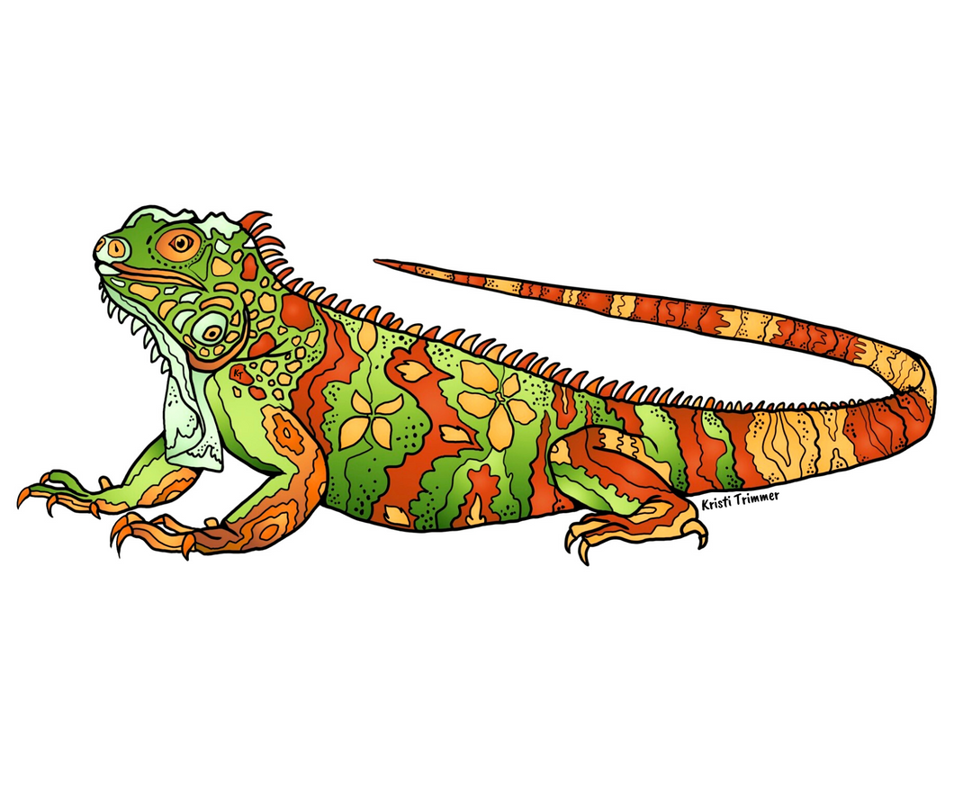 Lizard - Iguana Sticker