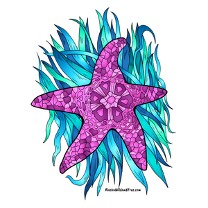 Starfish - Pink Starfish Sticker