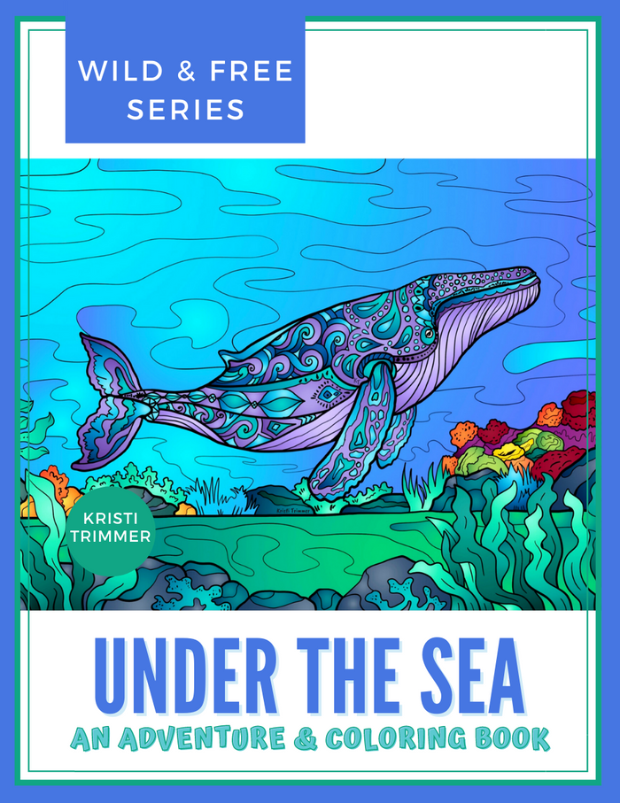 Book - Under the Sea: An Under Water Adventure & Coloring Book