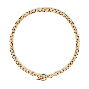 Aiden Rolo Chain Toggle Necklace