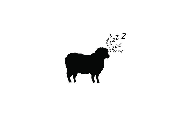 Can't Sleep? Maybe sheep can help.