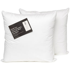 European pillow 2 pack