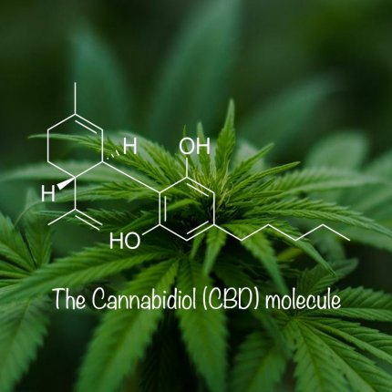 CBD Claims with Clinical Studies