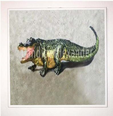 Alligator Original
