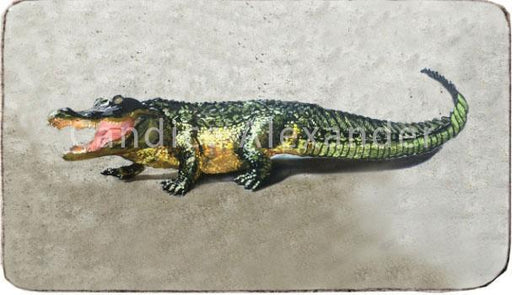 Alligator Art Designed by Candice Alexander, Fleur de Lis & Louisiana Artist