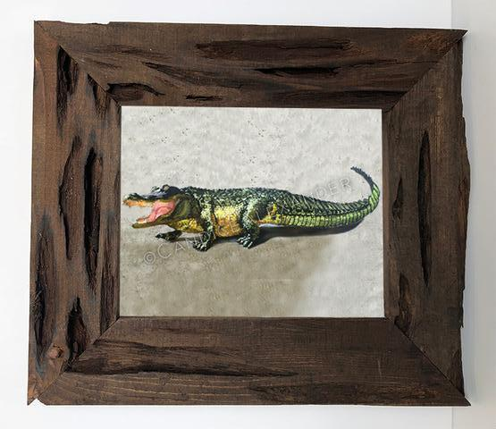 Candice Alexander Alligator Louisiana Cypress Frame