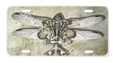 Dragonfly Antique