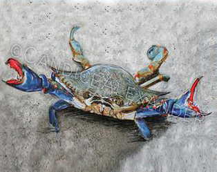 Crab Fleur De Lis art by Candice Alexander, Louisiana Artist