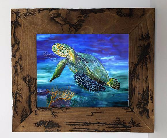 Candice Alexande Sea Turtle Electrocuted Frame