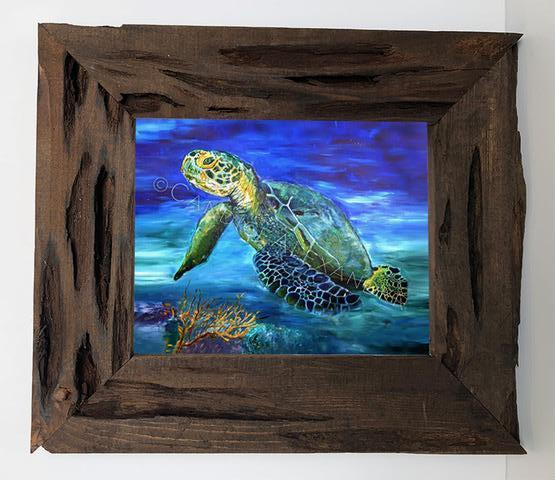 Candice Alexande Sea Turtle Louisiana Cypress Frame