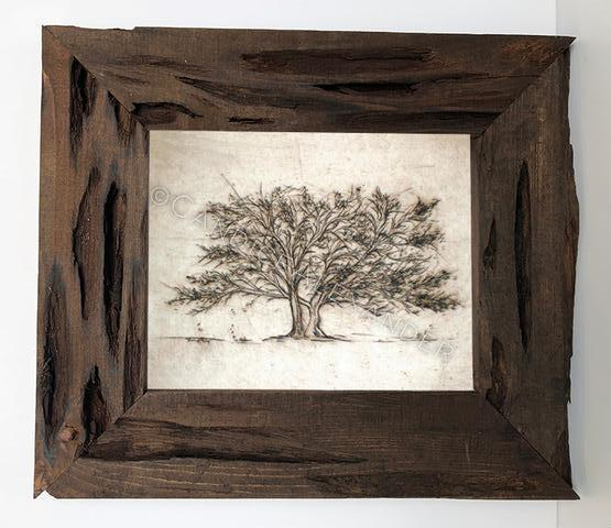 Candice Alexander Tree of Life Louisiana Cypress Frame