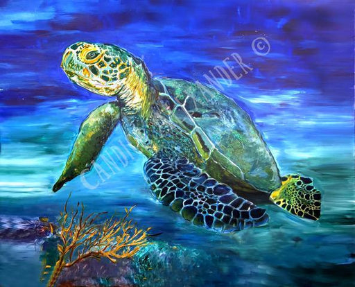 Candice Alexande Sea Turtle Design Fleur De Lis art by Candice Alexander, Louisiana Artist
