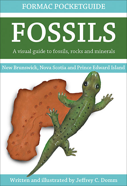 Formac Pocketguide to Fossils
