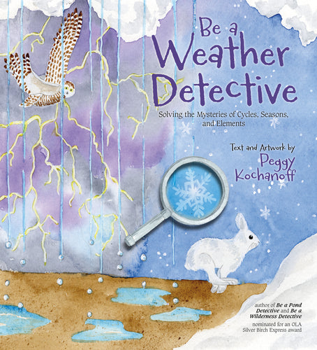 Be a Weather Detective