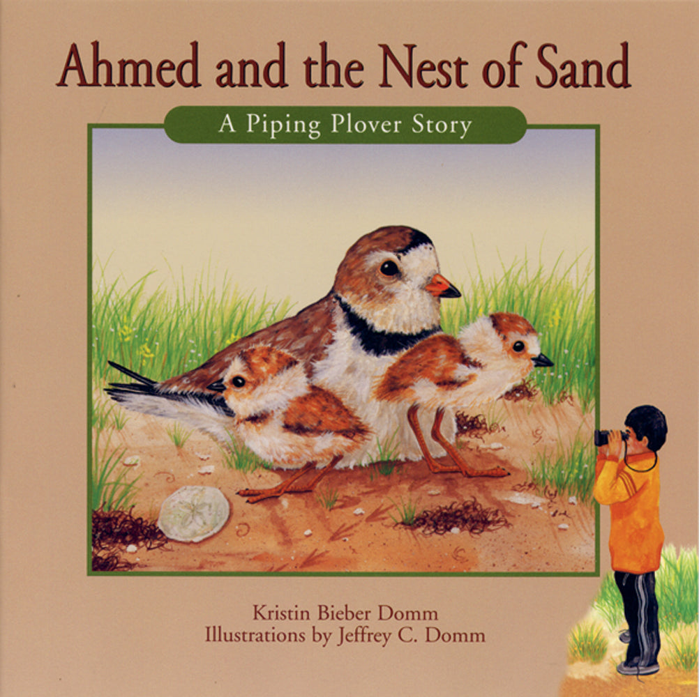 Ahmed and the Nest of Sand