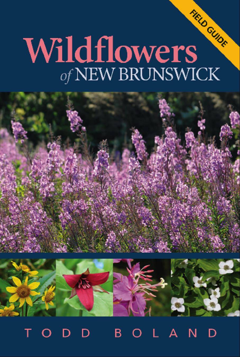 Wildflowers of New Brunswick
