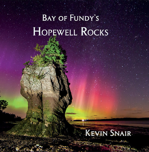 Bay of Fundy's Hopewell Rocks