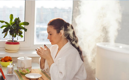 Humidifier winter skin pores
