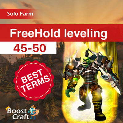 buy 45-50 leveling wow before shadowlands freehold 45-50