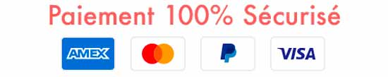 Trust Badge Solette Paiement Mobile