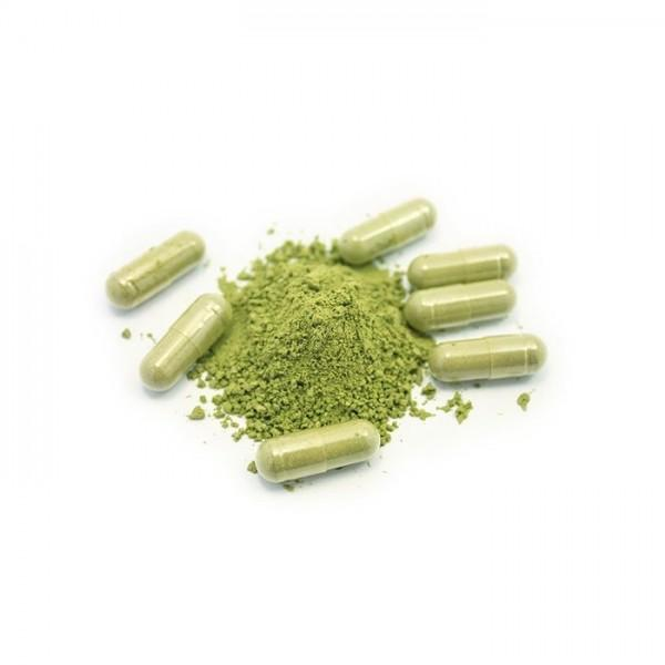 Whole Herbs Green Borneo capsules (120)