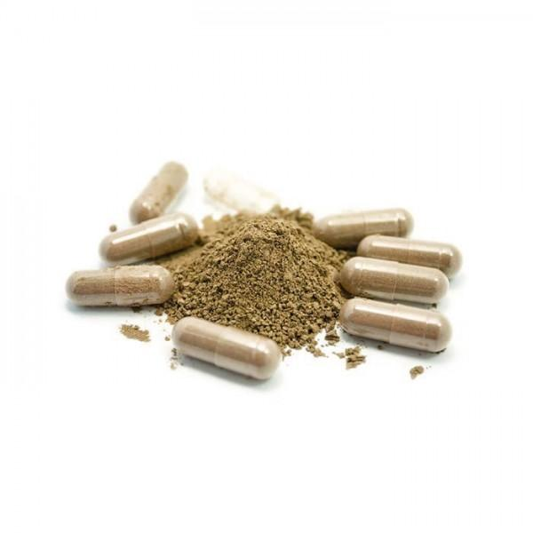 Whole Herbs Red Vein Bali capsules (60)