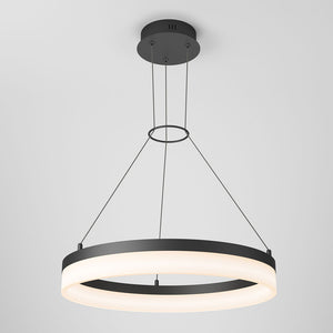 Optical LED Pendant Light Matte Black