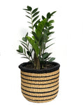 Black & White Striped African Basket