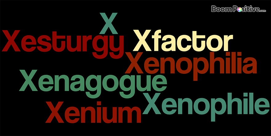 "Positive nouns that start with X ""Letter X naming Words"""